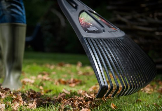 Gardez une pelouse propre.