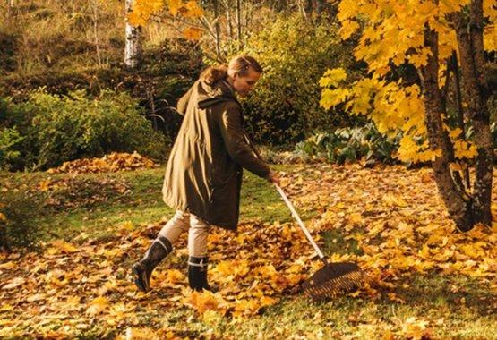 Ontdek hoe leuk tuinieren in de herfst is